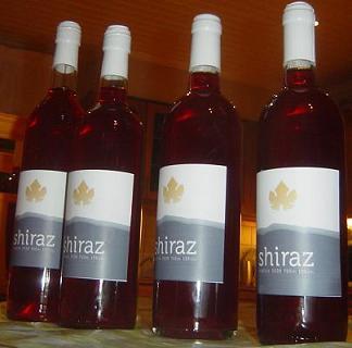 sharab_2009.jpg